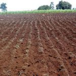 SOIL: The farmer's most  important asset PART 5: Physical properties of soil (2) (structure)