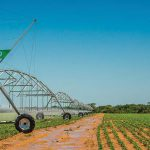 Agrico turns water into profit and rural development