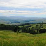 Yet another fracking ruling victory for KZN farmers