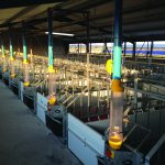 The first step to successful pig farming: Pig farmers depend on Dalein