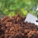 SOIL: The farmer's most important asset