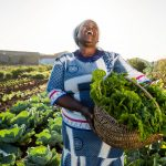 Transforming the agricultural sector by unlocking the potential of smallholder farmers