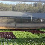 Aquaponics 5 – From biology to hardware
