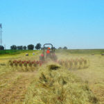 The operation and application of hay rakes and hay tedders – Part 6: The multiple-rotor rake