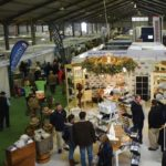 Agriculture alive and well at record NAMPO Cape Show