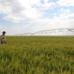 Save time, money with accurate Agrico centre pivot control