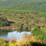 The ins and outs of legal water use by the RSA farmer