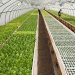 Fertigate for soil health and profit – Part 7: Electronic control, safety measures and injection of fertiliser solutions