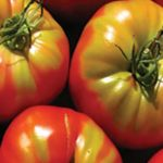 Why are potassium and calcium so important for vegetables?