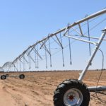 Great potential for Namibia's grain farmers
