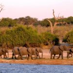 Wilderness Safaris Botswana joins hands with the farming community