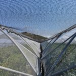 Protect your crop with nets but keep nature a partner