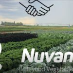 Dutch-based Bejo acquires South African distributor Nuvance