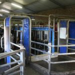 Create the perfect environment for your dairy cattle: Part 12