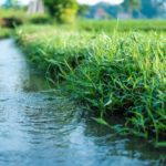 Irrigation made easy part 8: Irrigation efficiency
