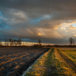 Climate and agricultural conditions June 2021